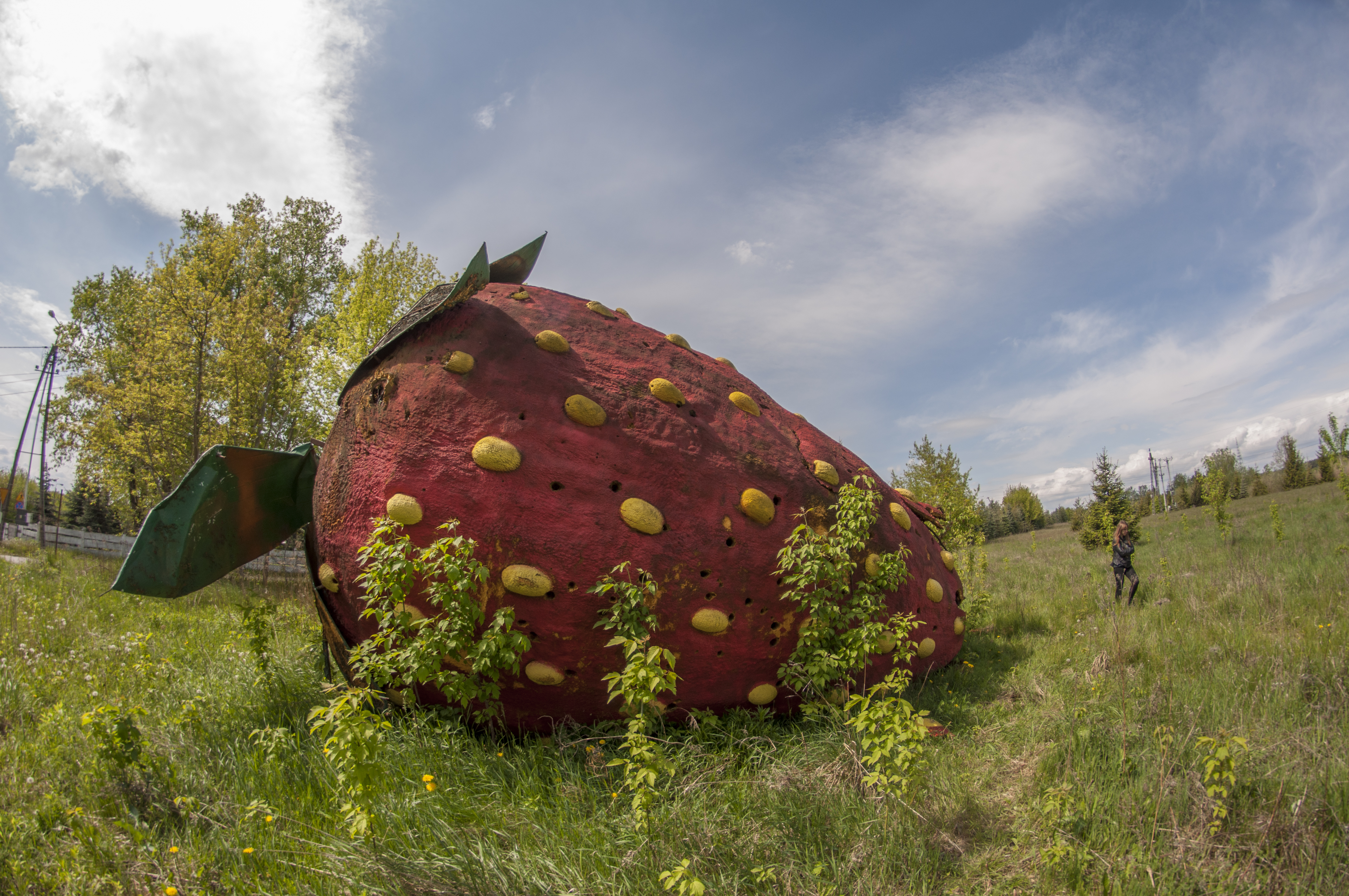 We Captured This Huge, Abandoned Strawberry Twice – In The Springtime And In The Wintertime. The Difference Is Significant! (10 Pictures)