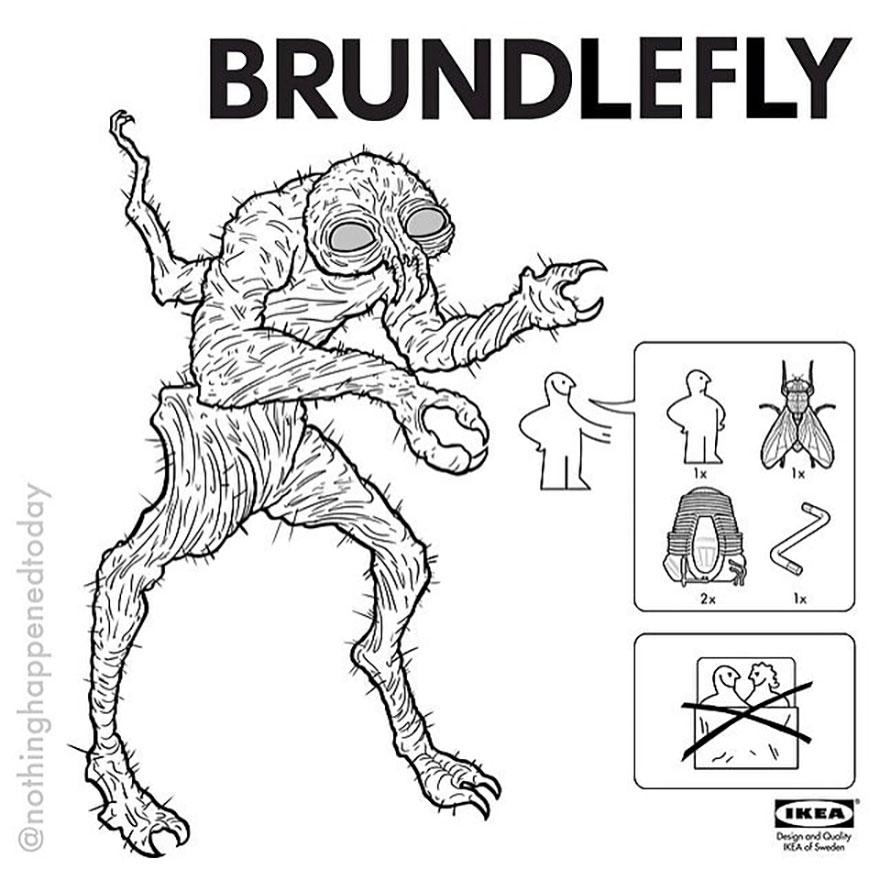 Brundlefly
