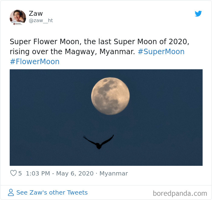 Super-Flower-Moon-May-2020