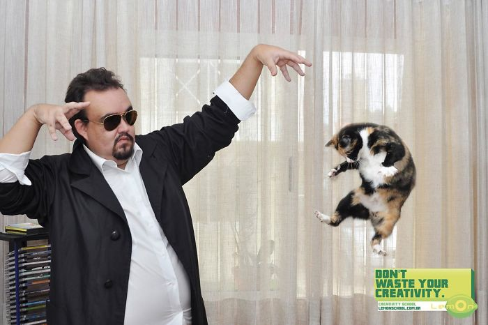 49 Ads Using Cats In A Purrrfect Way