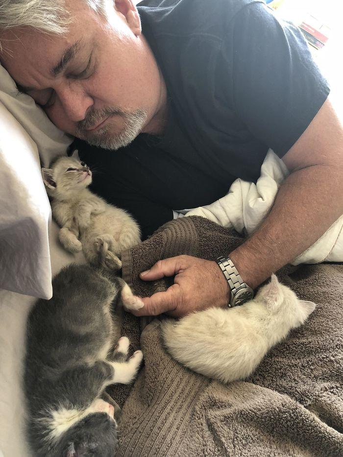 Con sus gatitos