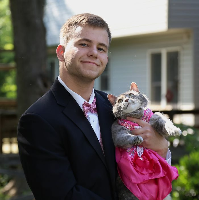 My Brother Took Our Cat To Prom. Just Take A Look At How The Cat Stares At Him