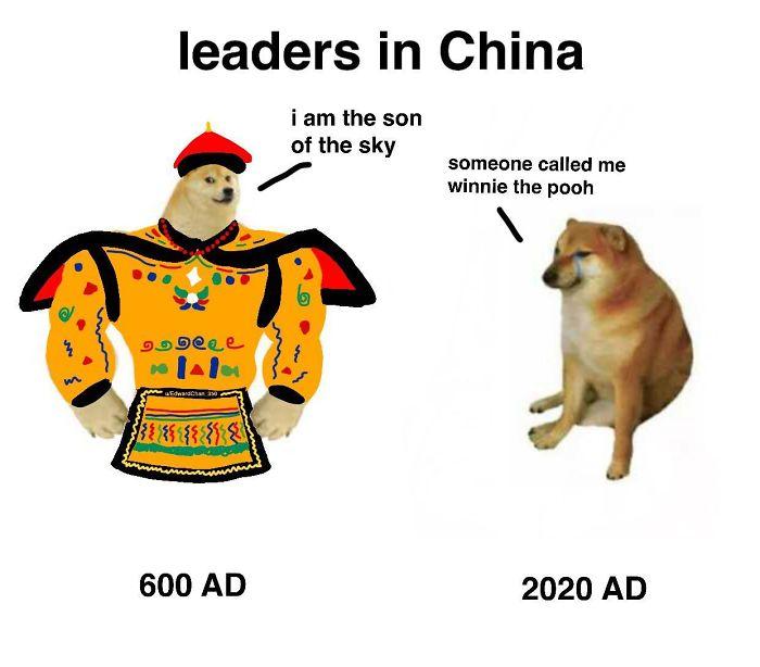Then-Now-Dog-Meme