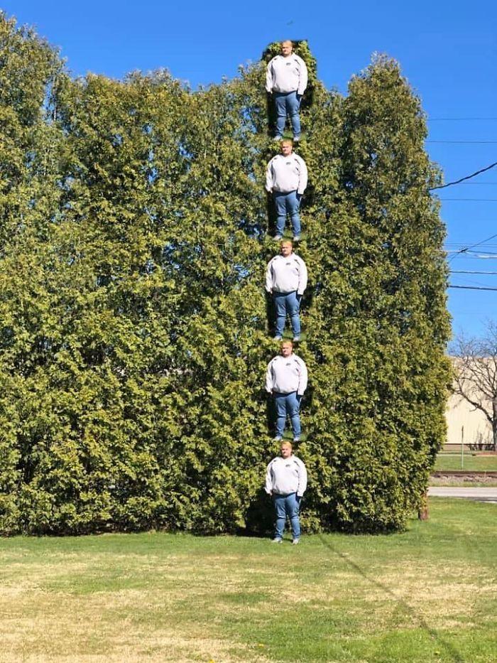 Mi hermano quería medir los árboles de su jardín. Así fue como lo hicimos