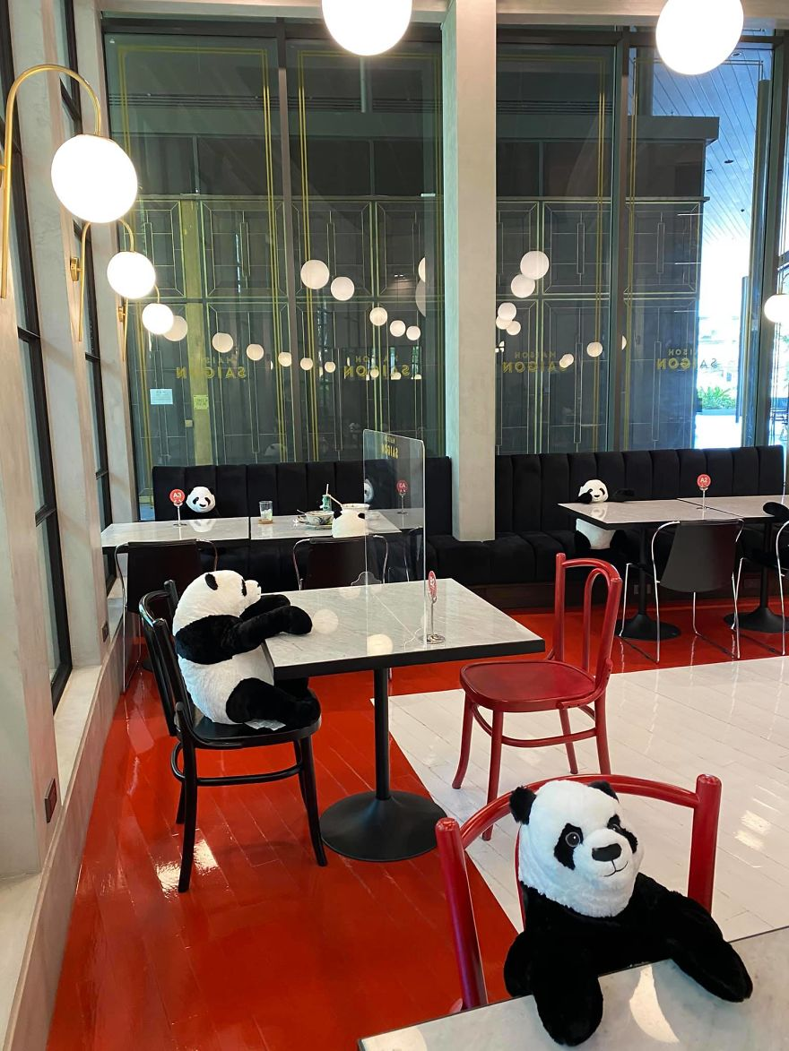 Restaurant Finds A Genius Way To Help Their Customers Feel Less Lonely While Social Distancing Using Pandas (10 Pics)