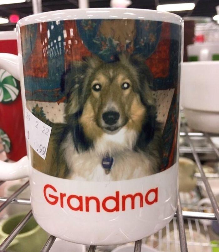 Grandma Lassie