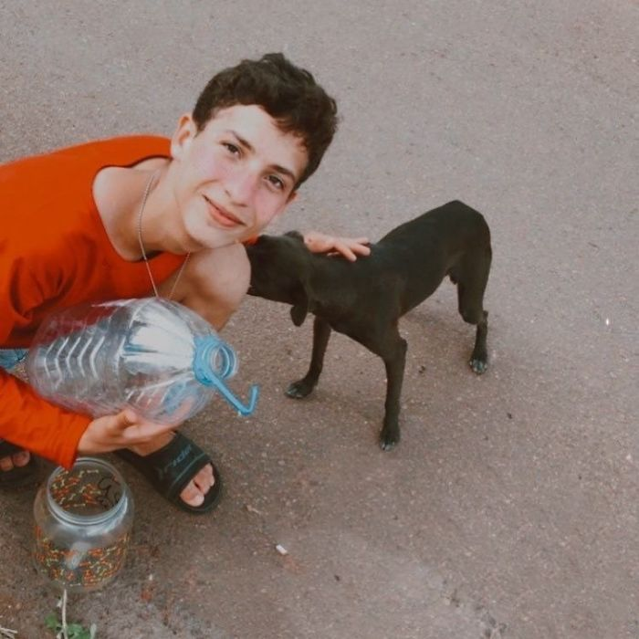 17-Year-Old Opens A Unique Animal Shelter And He Has Already Rescued 22 Dogs And 4 Cats