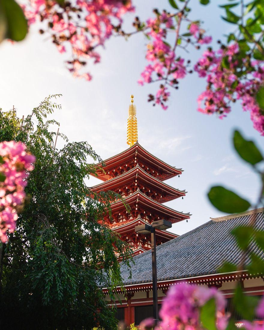 Beautiful Spring Morning In Tokyo