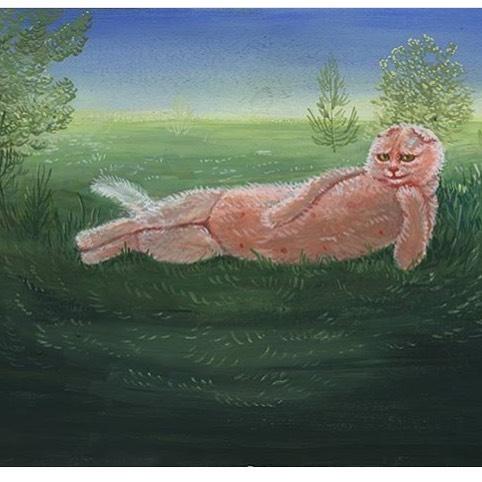 Fluffy Pink Cat
