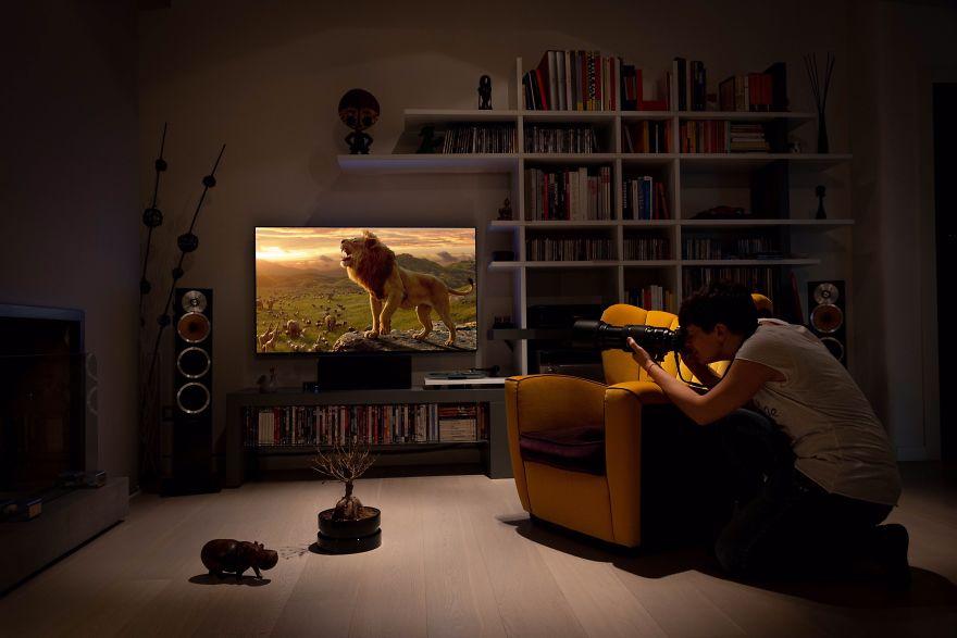 Enjoy The Safari At Home