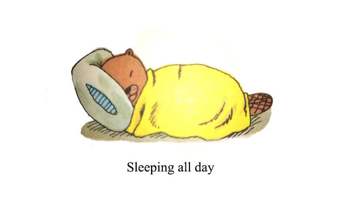 Zzzzzzzzz.....Unless You Have Kids (Then You Sleep When You Are Dead)
