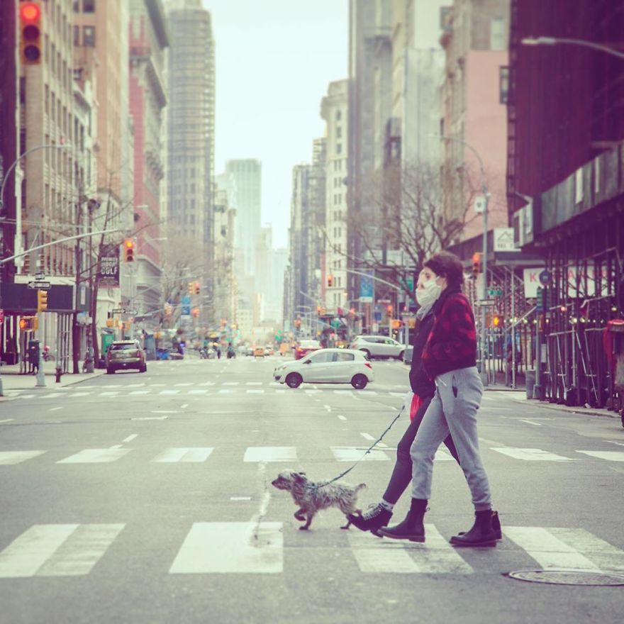 When Walking The Dog Becomes A Luxury Adventure