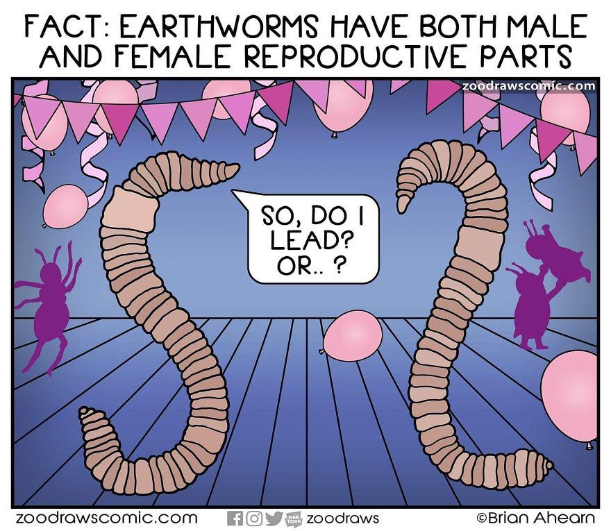 Worm Love