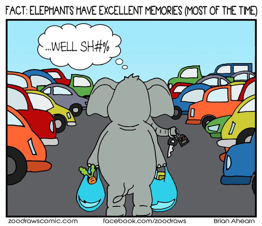 Elephant Keys