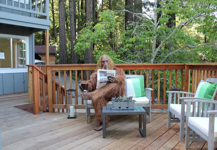Someone Posed As Bigfoot In This $999,000 House Listing And The Photos Are Hilarious