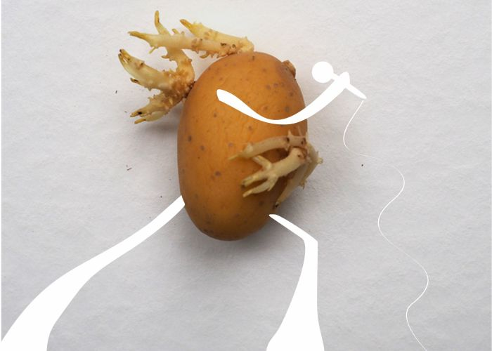 I Created Art With Potatoes During Quarantine (11 Pics)