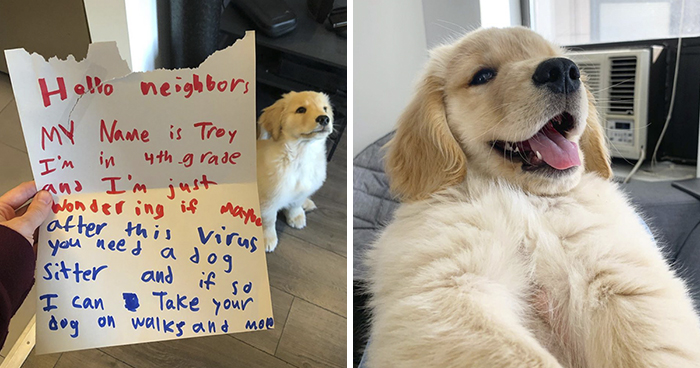 """10 Y.O. Boy Writes A Letter To His Neighbor Saying """"I'm Wondering If Maybe After This Virus You Need A Dog Sitter"""""""