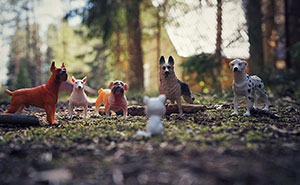 I Capture The Magical World Of My Children And Their Toys (25 Pics)