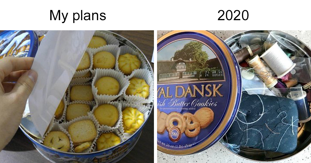 """My Plans Vs. 2020"" Memes Show People's Shattered Hopes To Have A Good 2020"