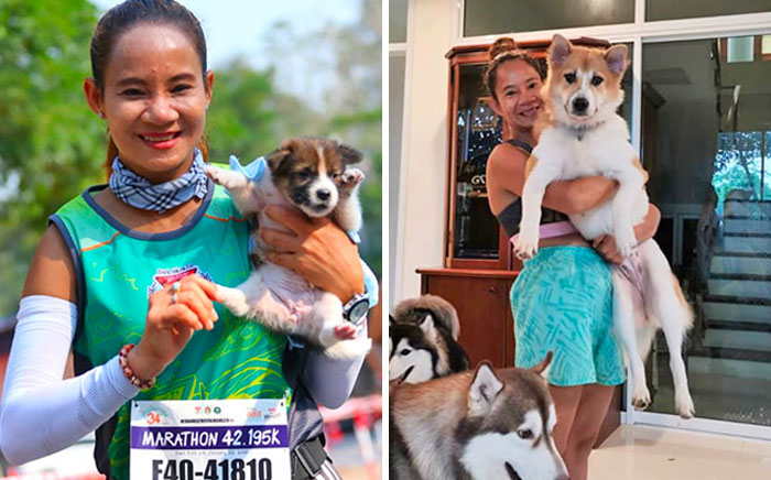 Khemjira Klongsanun Found An Abandoned Puppy On The Road Side In Thailand Whilst Running A Marathon, Carrying It For 19 Miles To The Finish Line And Adopting It. That Puppy Is Now All Grown Up!