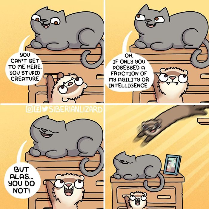 Funny-Ferrets-Comics-Siberian-Artist-Liza-Nechaeva