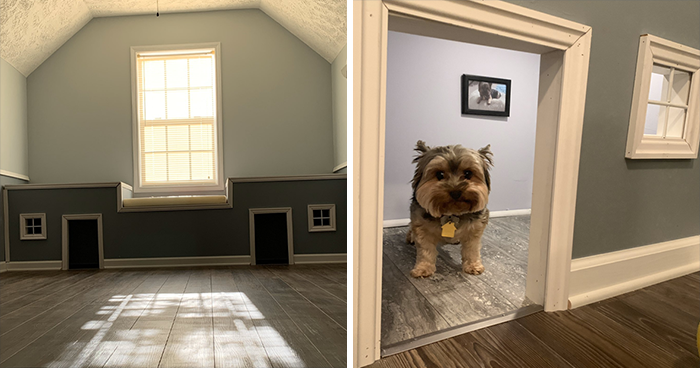 Woman Documents Her Daughter Turning A Spare Room Into A House For Their Dogs