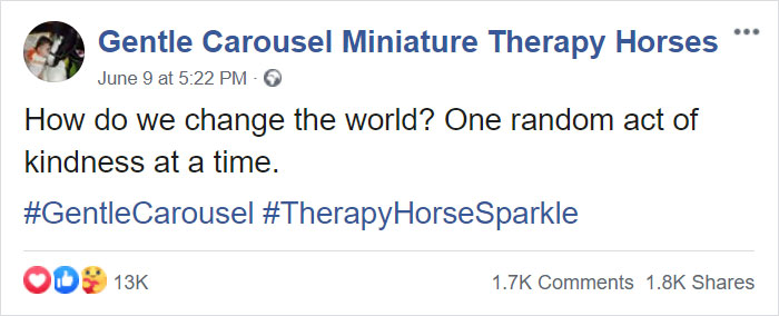 Therapy Page Posts A Pic Of A Black Girl With A Horse, Receives Racist Comments, Shuts Them Down