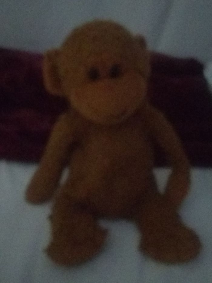 Meet Mr.johnson. My Favorite Stuffed Animal Ever. I Got Him When I Was A Baby