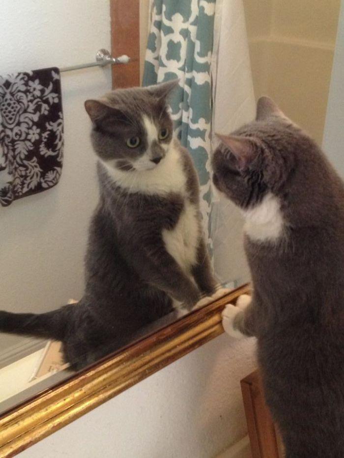 Chloe 'Mirin Herself In The Mirror