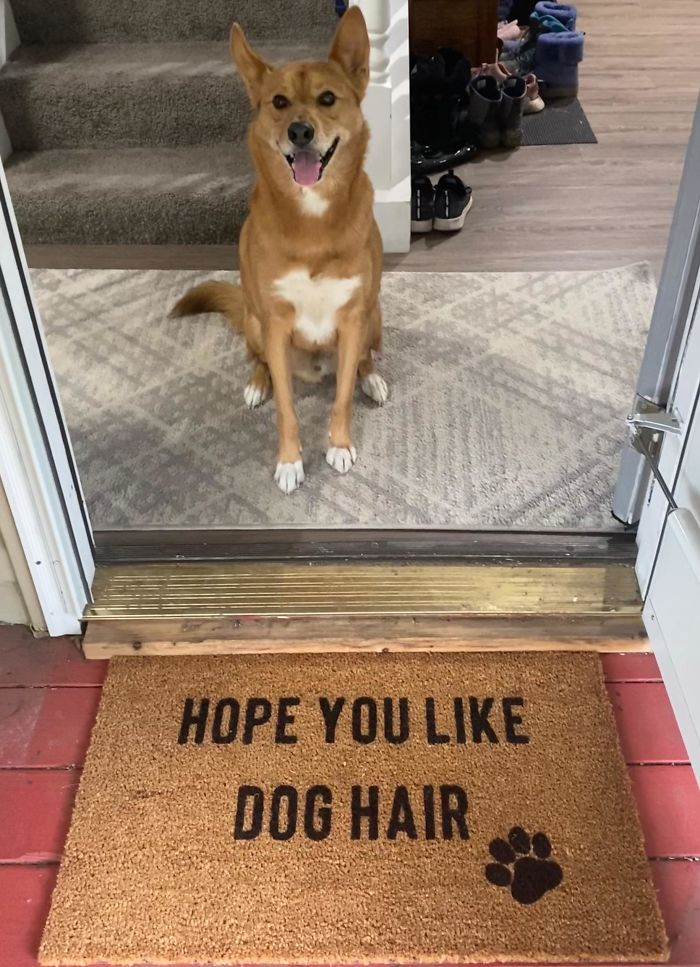 Our Adopted Boi Is Half Husky. Got A Custom Doormat Made Just For Him!