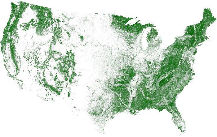 Zonas arboladas de EEUU