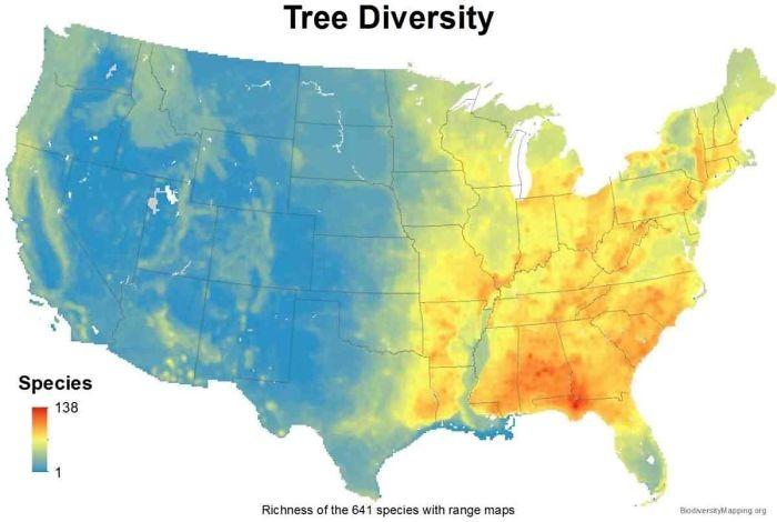 USA Tree Diversity
