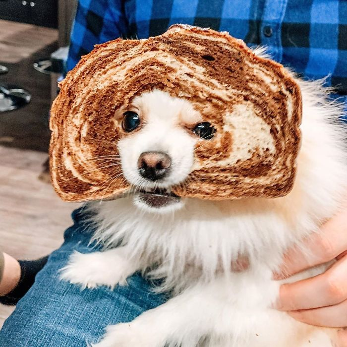 When Breading Goes Wrong