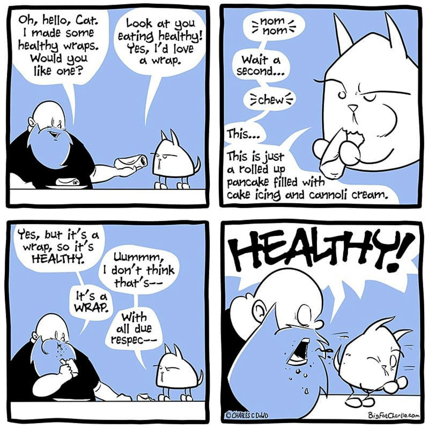13 Comics About Being Fat, Having Diabetes, And A Cat
