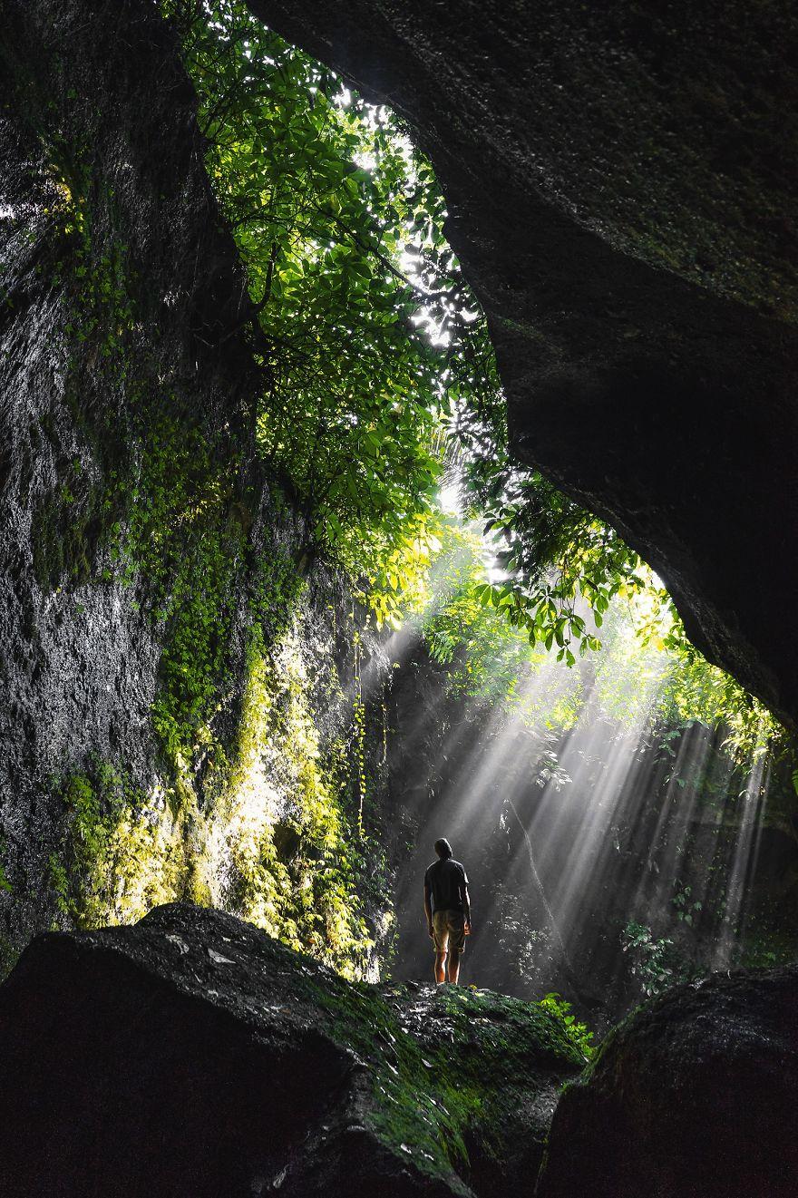 Bali's Greens