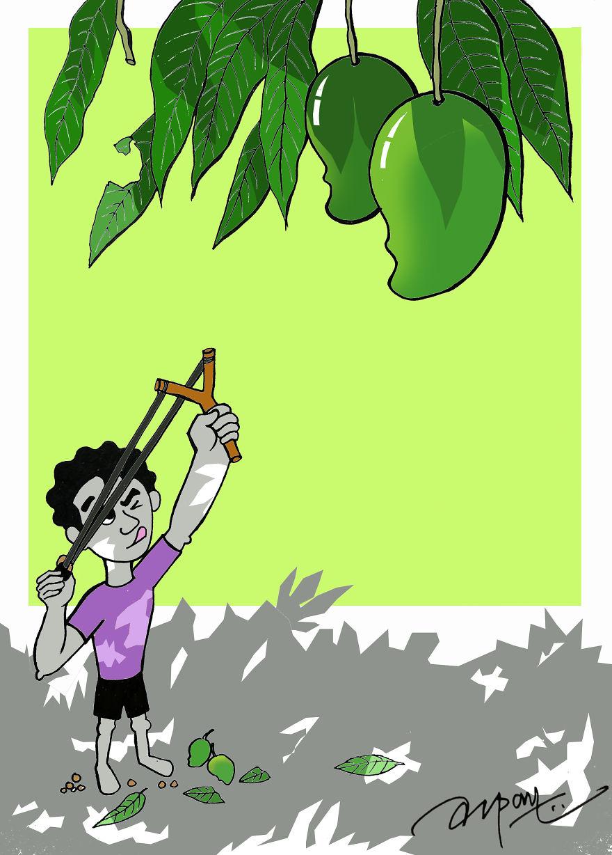 Slingshot And Mangoes
