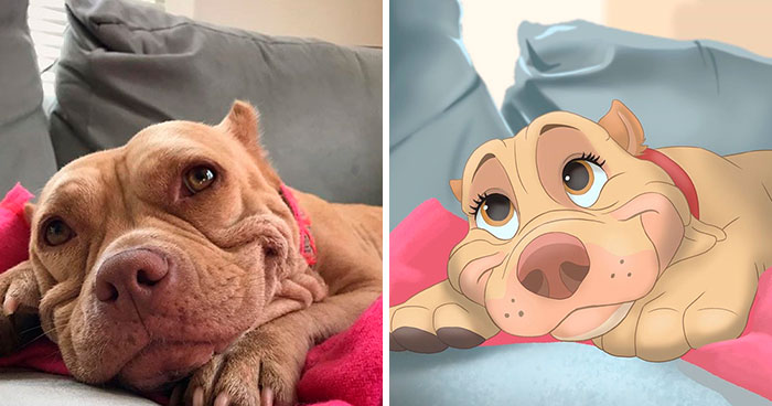 People Send Pics Of Their Pets To This Artist And She Disneyfies Them (30 Pics)