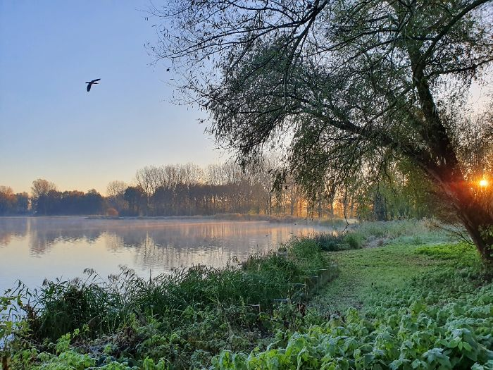 Taken In The Netherlands (Delft) On One Of My Early Morning Runs