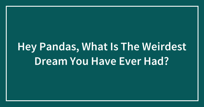 Hey Pandas, What Is The Weirdest Dream You Have Ever Had? (Ended)