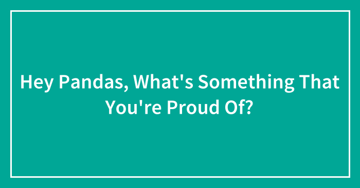 Hey Pandas, What's Something That You're Proud Of? (Ended)