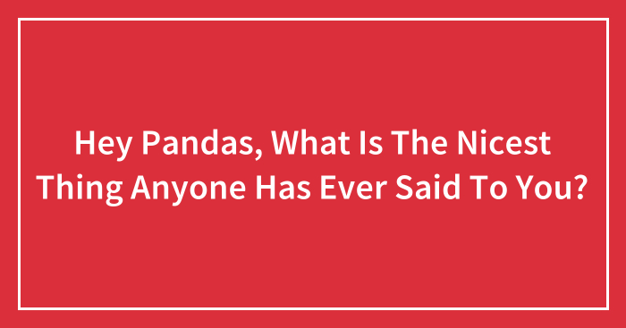 Hey Pandas, What Is The Nicest Thing Anyone Has Ever Said To You? (Ended)
