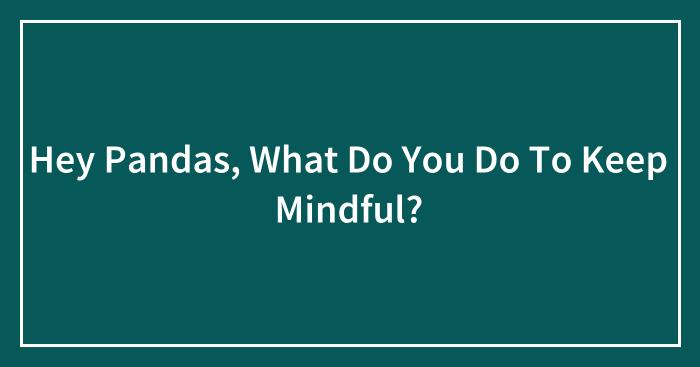 Hey Pandas, What Do You Do To Keep Mindful? (Closed)
