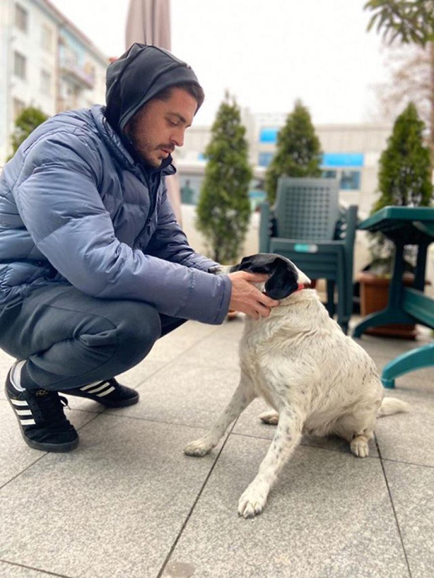 Собака помогает
