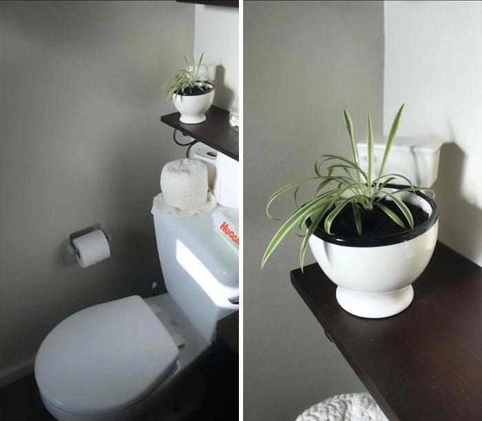 I Feel Like This Is Tacky But I Honestly Love It. Toilet Mug Found At The Local Salvation Army, Repurposed As Bathroom Decor
