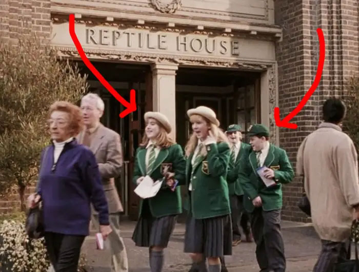In The Sorcerer's Stone, School Children Wearing Green School Uniforms Walk By The Reptile Room. This Is A Nod To Slytherin's House Color Being Green And Their Symbol Being A Snake