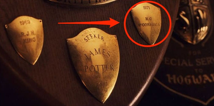 In 'The Sorcerer's Stone,' You Can See Mcgonagall's Name On The Quidditch Trophy Right Next To James Potter