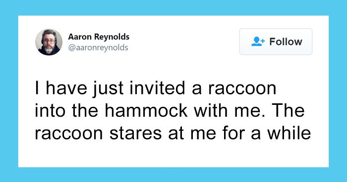 Guy With Poor Eyesight Thinks His Cat Is Climbing Into A Hammock, Realizes It's An Unwelcome Guest Too Late
