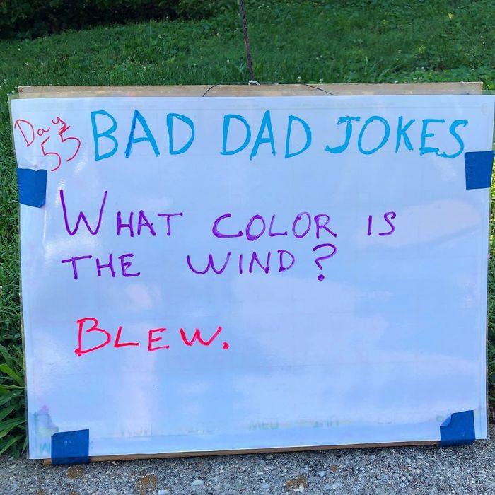 Man-Posts-Toms-Bad-Dad-Jokes-On-His-Lawn