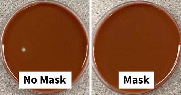 no-mask-vs-mask-experiment-rich-davis-fb40-png__700-1.jpg