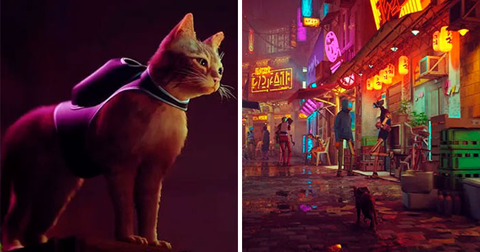 New PS5 Game 'Stray' Lets You Be A Cat In A Neon-Lit Cybercity And Solve Mysteries In It
